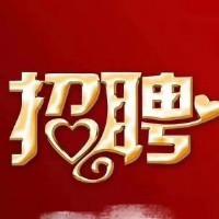 重庆捷致汽车经纪有限公司