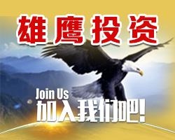 重慶市雄鷹投資有限公司