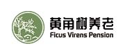 重庆黄角树养老服务有限公司